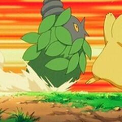 Burmy vs Pikachu.