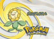 EP136 Pokémon