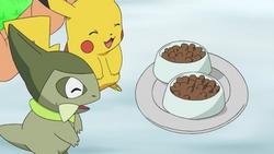 EP668 Comida de Pikachu y Axew