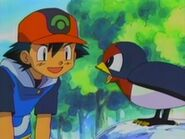 EP280 Ash y Taillow