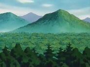 EP004 Vista Bosque Verde