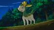EP717 Deerling de Koharu