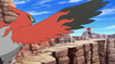 EP840 Combate aéreo entre Talonflame y Fletchling