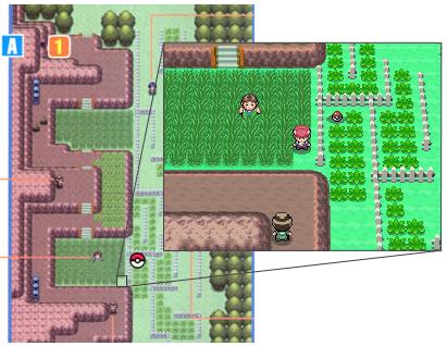 Localización del colmillo agudo en Pokémon Platino