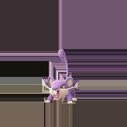 Rattata GO