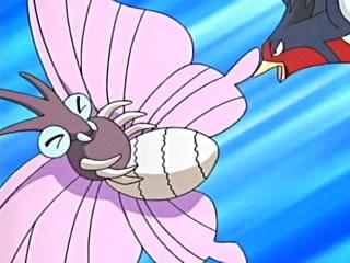 Archivo:EP406 Venomoth de Katie atacado por el Swellow de Ash.jpg