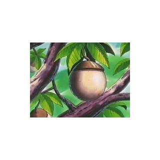 Un bonguri blanco