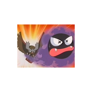 Noctowl vs. <a href=