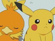 EP295 Pikachu y Torchic