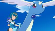 EP1008 Pokémontura de Lana