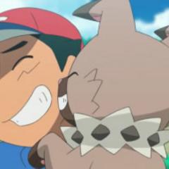 Rockruff frotando las rocas de el cuello en Ash.