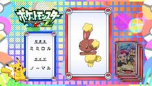 EP917 Pokémon Quiz