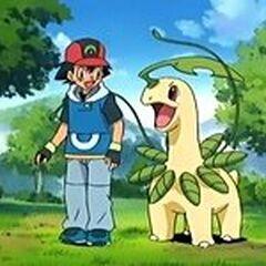 Ash se reencuentra con Bayleef en <a href=