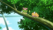 EP844 Caterpie y Weedle