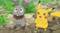 EP875 Bunnelby y Pikachu