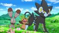 EP892 Pokémon de Lem