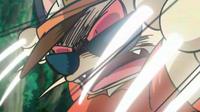 EP1016 Golpes furia usado por el Meowth del Equipo-Team Rocket