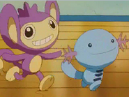 EP230 Aipom y Wooper