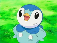 EP472 Piplup