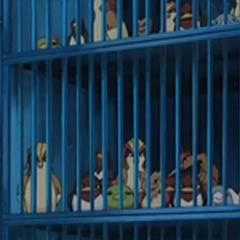 Jaulas con los Pokémon capturados.