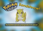 EP220 Pokémon