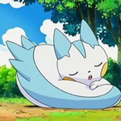 Pachirisu durmiendo.