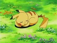 EP525 Pikachu durmiendo como señuelo