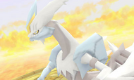 MM3D Kyurem Blanco
