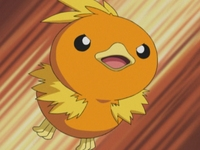 EP305 Torchic