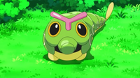 EP792 Caterpie