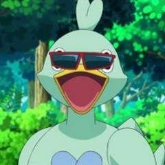 Ducklett con las gafas de <a href=