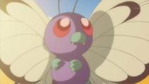 EP792 Butterfree