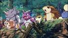 P04 Pokémon del bosque (2)