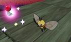 Pokémon desconocido SL