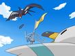 EP587 Swellow vs Wingull