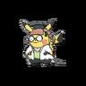 Pikachu erudita ROZA