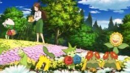 P12 Pokémon de jardín