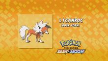 EP981 Quién es ese Pokémon