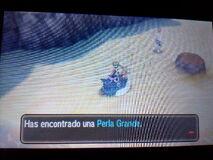Perla grande 2 oculta Playa Menor