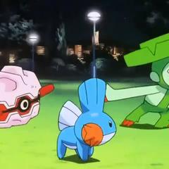 P07 Pokémon de Brock.png