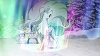 EP1003 Ninetales usando velo aurora
