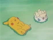 EP126 Pikachu y Togepi