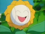 EP137 Sunflora con cremas faciales