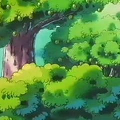 Un árbol de bonguri verde