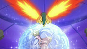 EP643 Buneary y Cyndaquil actuando(2)