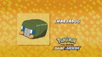 EP984 Quién es ese Pokémon