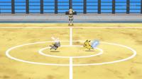 EP943 Bunnelby VS Pikachu