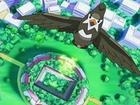 EP506 Gimnasio Pokémon de Vetusta visto desde arriba