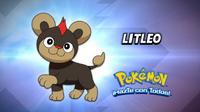 EP900 Cuál es este Pokémon