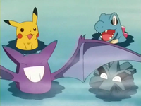 EP261 Pokémon bañándose (3)